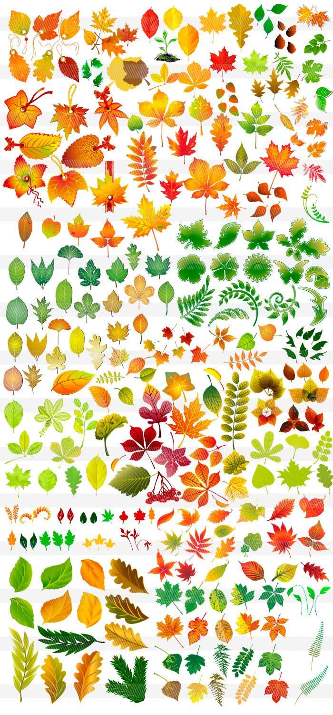 秋・紅葉のイラスト