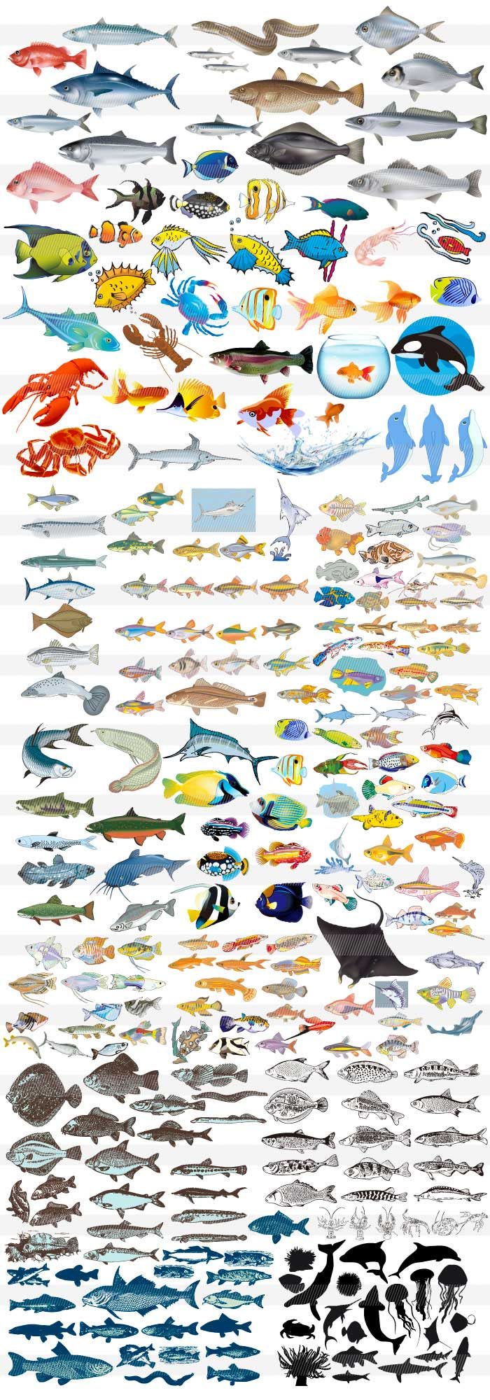 魚・貝のイラスト|商用OKなイラストレーター素材(AI・EPS)の販売ならJS素材ドットコム