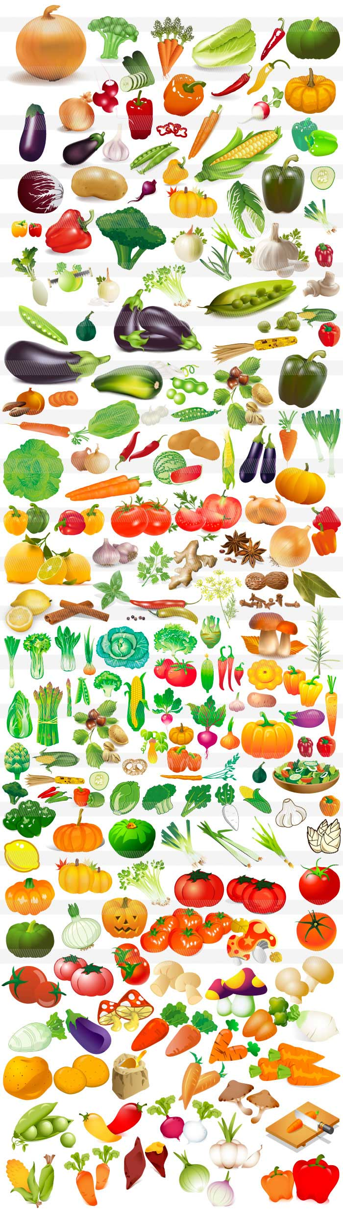 野菜・食べ物のイラスト