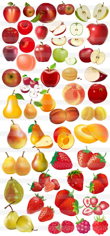 果物フルーツのイラスト|イラストレーター素材(ai・eps・商用可能)