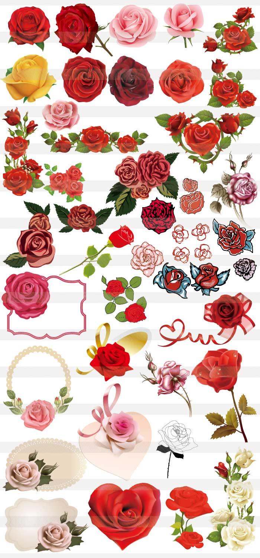 お洒落なバラのイラストと背景 イラストレーター素材 Ai Eps 商用可能