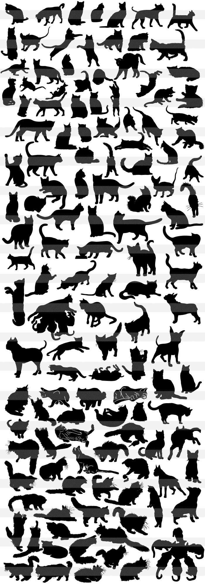 猫・子猫・黒猫