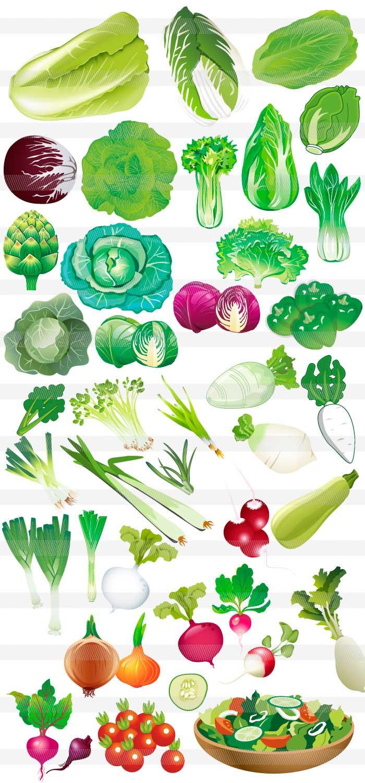 野菜食べ物のイラストイラストレーター素材aieps商用可能
