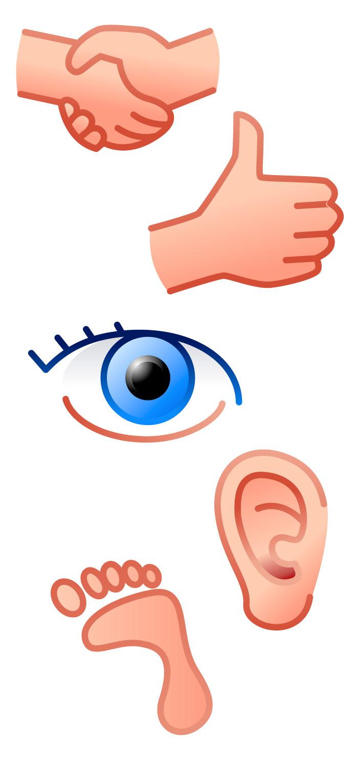 手足目耳のボディパーツの無料イラスト|イラストレーター素材(ai・eps